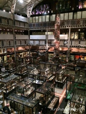 皮特河博物館一景