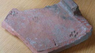 這片印有貓腳印的羅馬屋瓦,距今大約兩千年,藏於格洛斯特市立博物館及美術館。(Gloucester City Museum)